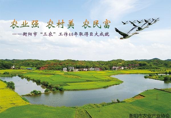 """农业强、农村美、农民富――衡阳市""""三农""""工作40年取得巨大成就"""