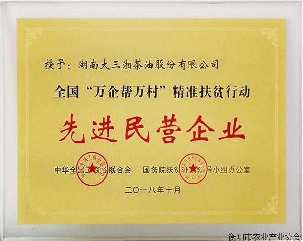 """大三湘荣获全国""""万企帮万村""""精准扶贫行动先进民营企业"""