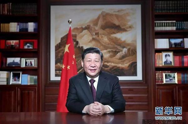 分享:国家主席习近平发表二�一九年新年贺词