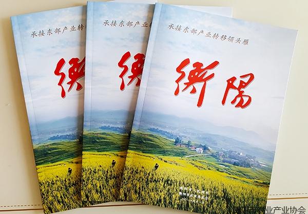 衡阳农业巡礼宣传片